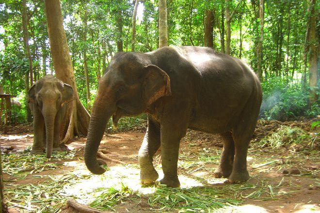 Ban Chang Thai - Elephant Camp, Ko Chang, Thailand