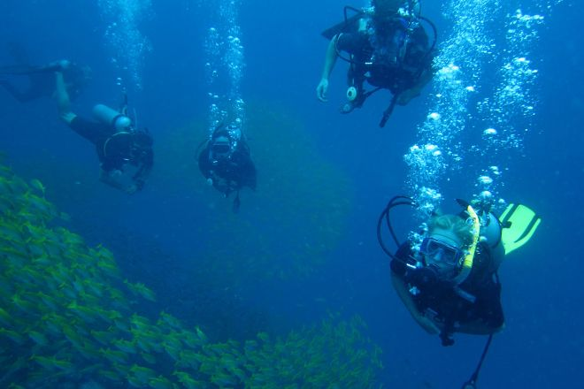 Chaloklum Diving, Ko Pha Ngan, Thailand