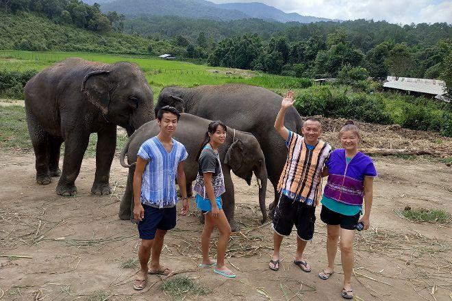 Elephant Pride Sanctuary, Chiang Mai, Thailand