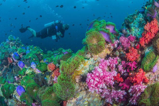 Phuket Dive Tours, Kata Beach, Thailand