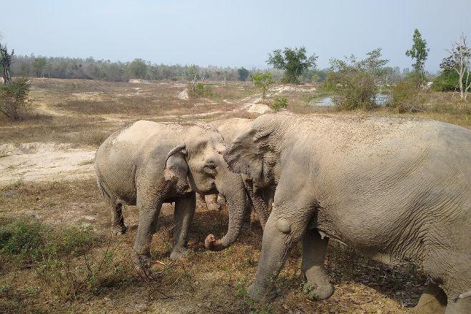Wildlife Friends Foundation Thailand, Tha Yang, Thailand
