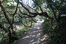 Nature Reserve de Manteling