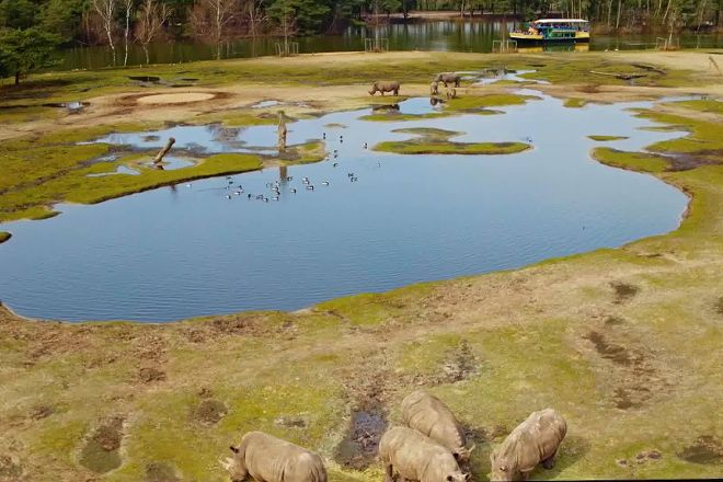 Safaripark Beekse Bergen, Hilvarenbeek, The Netherlands
