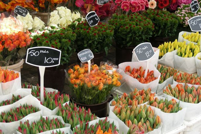 Bloemenmarkt, Amsterdam, The Netherlands