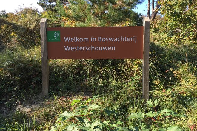 Boswachterij Westerschouwen, Westenschouwen, The Netherlands