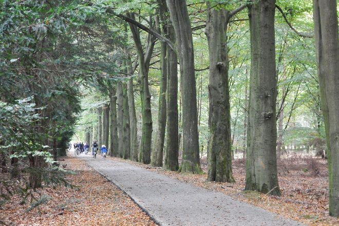 Hoge Veluwe National Park, Gelderland Province, The Netherlands