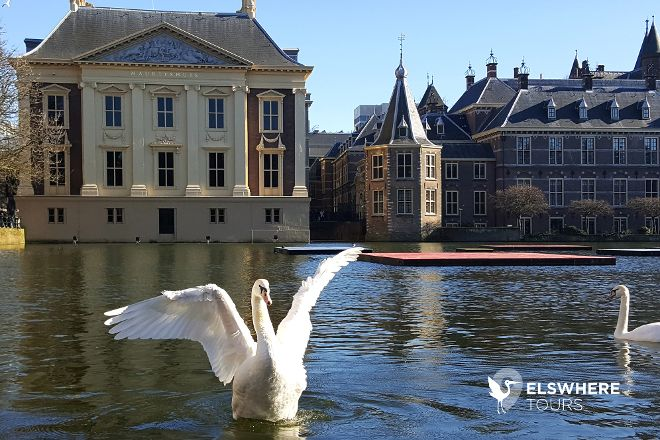 Elswhere Tours, The Hague, The Netherlands