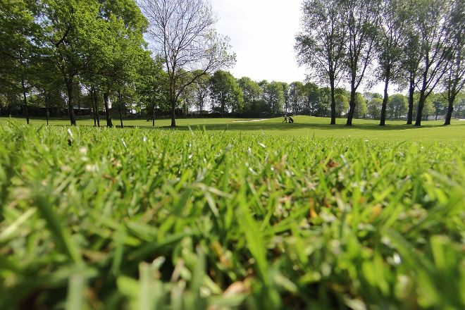 Golfclub Dorpswaard, Kerkdriel, The Netherlands