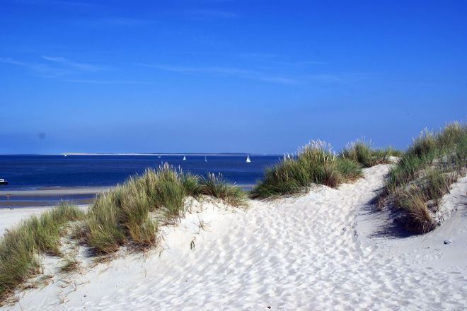 Groene strand, West-Terschelling, The Netherlands