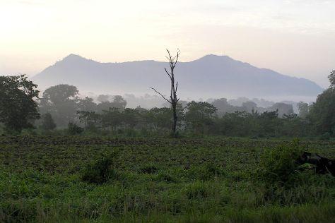 Mount Agou, Kpalime, Togo