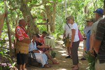 Ene'io Botanical Garden, Neiafu, Tonga