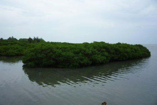 Captain Cook's Landing Place, Tongatapu Island, Tonga