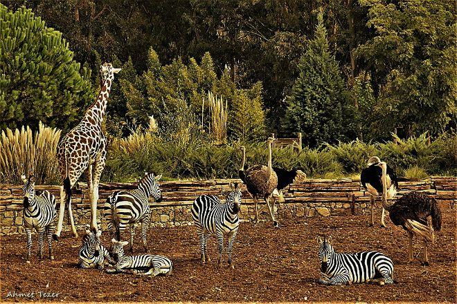 Izmir Wild Life Park, Izmir, Turkey