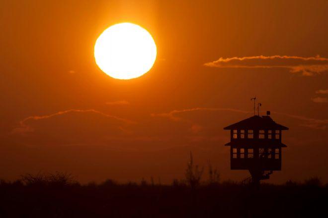 Kızılırmak Deltası Kuş Cenneti, Samsun, Turkey