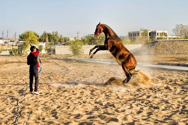 Ashgabat hippodrome, Ashgabat, Turkmenistan
