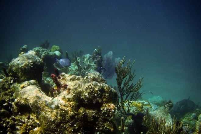 Princess Alexandra National Park, Providenciales, Turks and Caicos