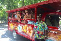Star Fish Tours & Taxi