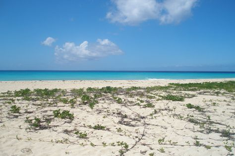 Sandy Point National Wildlife Refuge, St. Croix, U.S. Virgin Islands