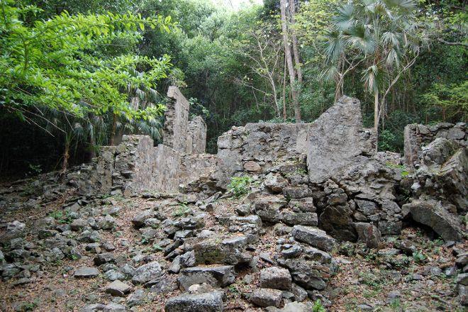 Cinnamon Bay Nature Trail, Virgin Islands National Park, U.S. Virgin Islands