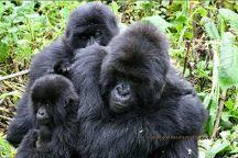 Arrive Africa Safaris