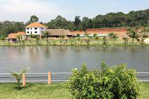 Forest Park Resort
