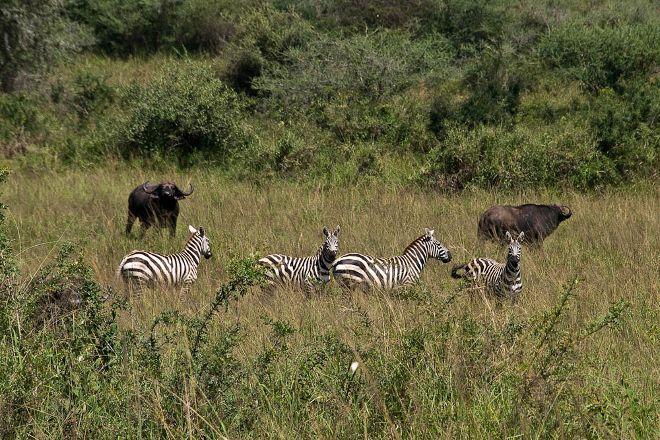 Kidepo Valley National Park, Kitgum, Uganda