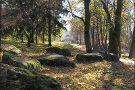 Oleksandriya Park