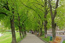 Linden Alley, Uzhhorod, Ukraine