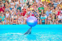 Nemo Odessa Dolphinarium, Odessa, Ukraine