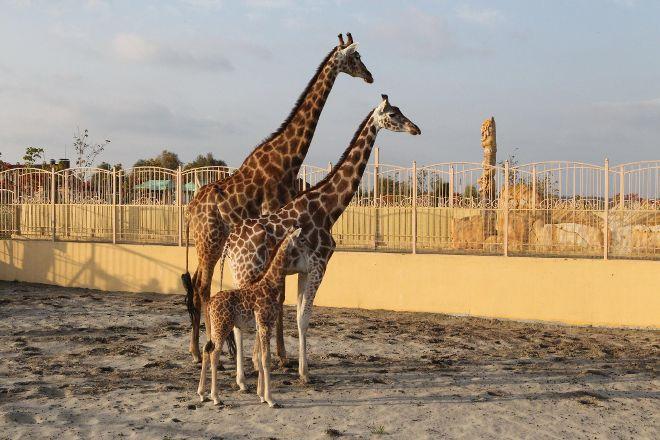 Zoo XII Months, Demidov, Ukraine
