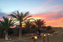 Desert Road Tours
