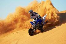 Desert Safari Adventures, Dubai, United Arab Emirates