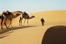 Emirates Tours and Safaris