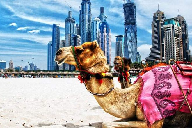 Eclipse Tourism, Dubai, United Arab Emirates