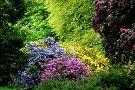 Galloway House Gardens