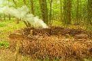 Poulton Wood Nature Reserve