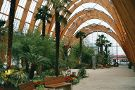 Sheffield Winter Garden