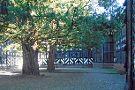 Speke Hall
