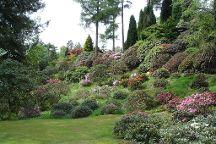 Benmore Botanic Garden, Benmore, United Kingdom