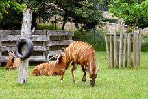 Blackpool Zoo, Blackpool, United Kingdom