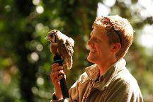 Hawk Conservancy Trust, Weyhill, United Kingdom
