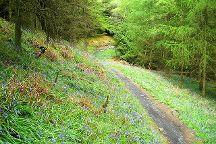 Kirroughtree - 7stanes, Newton Stewart, United Kingdom