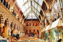 Oxford University Museum of Natural History, Oxford, United Kingdom