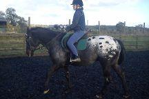 Pioneer Equestrian Coaching