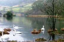 Rydal Water, Windermere, United Kingdom