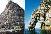 Seabirds-and-Seals - Daily Wildlife Noss Boat Tours Lerwick(Shetland), Lerwick, United Kingdom