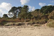 Studland beach and Nature Reserve, Studland, United Kingdom