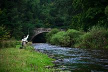 The Durham Fly Fishing Company, Durham, United Kingdom