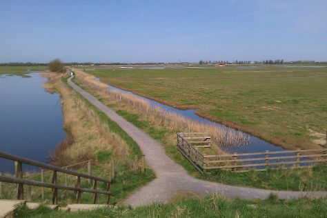 RSPB Frampton Marsh, Boston, United Kingdom