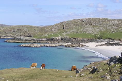 Isle of Lewis